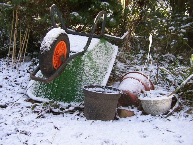 moestuin winter